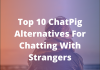 ChatPig Alternatives For Chatting With Strangers
