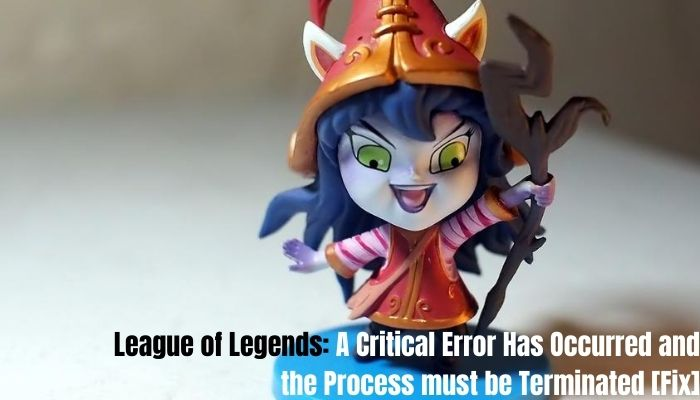 a critical error has occurred and the process must be terminated