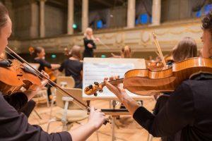 Viola Vs Violin