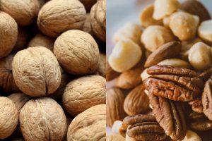 Pecan vs Walnut
